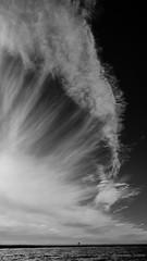 Méduse celeste (Alexandre DAGAN) Tags: iledaix charentemaritime nouvelleaquitaine france ile island sky ciel nuages nuage clouds cloud noir blanc black white noiretblanc noirblanc blacknwhite blackandwhite blanckandwhite mer océan seascape panasoniclx100 panasonic lx100 dmclx100
