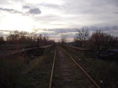 DSCN5239 (TajemniczaIstota761) Tags: abandoned railway viaduct wiadukt kolejowy