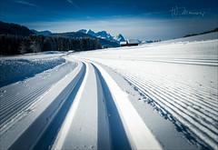 Die Spur (W.MAURER foto) Tags: deutschland bayern geroldsee langlauf spur track crosscountrytrack blau sport sports wintersports schnee snow sonnenschein nikond800 nikon tamron1530mmf28 tamron holiday travel germany bavaria garmisch
