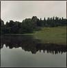 Lac du Crescent (steve-jack) Tags: hasselblad 501cm 150mm fuji superia 100 film 120 6x6 medium format france lac du crescent charolais cattle