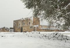 MASSERIA CARIGNANO GRANDE (Aristide Mazzarella) Tags: masseria carignano grande aristide mazzarella landscape paesaggio salento innevato neve snow nardo