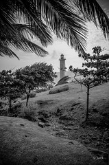 le phare de la Pointe du Vieux-Fort (Jack_from_Paris) Tags: l1005223bw leica m type 240 10770 leicaelmaritm28mmf28asph 11606 dng mode lightroom capture nx2 lr monochrom noiretblanc guadeloupe gwada sun soleil antilles antillais ambiance françaises phare mer sea nuages clouds ciel landscape paysage le du vieux fort palmiers palm tree