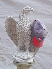 "Majesty, ""In God We Trust."" (brooksbos) Tags: animal art sculpture statue america brooksbos brooks cybershot dscrx100m2 rx100 rx100m2 sony eagle cap patriots family friendship friend son majestic love newengland"