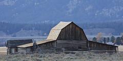Barn (ramislevy) Tags: robertamislevyphotography moulton jacksonhole antelopeflats grandtetons mormon row farm barn