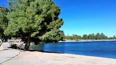 Apollo Park (Joe Lach) Tags: apollopark trees lake walkway path walking walkingpath water waterpictorial lancaster california joelach