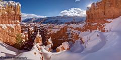 Afternoon Delight (OJeffrey Photography) Tags: brycecanyonnationalpark nationalpark utah ut snow wallstreet bluesky panorama pano ojeffrey ojeffreyphotography jeffowens nikon d800