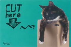 Cat_cut (sarinubia) Tags: postcard cat swappostcard swap postcrossing