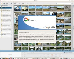 Picasa for Linux