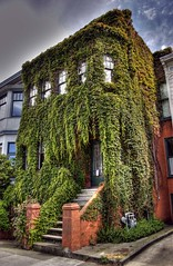 only in San Francisco, part 1 (creepy) (ehoyer) Tags: sanfrancisco house green 20d canon ivy guesswheresf hdr foundinsf thecastro 3xp top500 photomatix explored tthdr thebiggestgroup handheldhdr sfchronicle96hrs