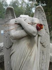 perder la cabeza como ángel