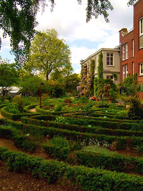Botanic Gardens Amsterdam Tourist Guide