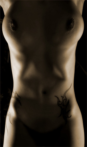 Torso -- haut bodyscapes skin nude akt torso