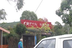 Fresh Hair in Lorne (jonathanpoh) Tags: holiday australia 2006 lorne