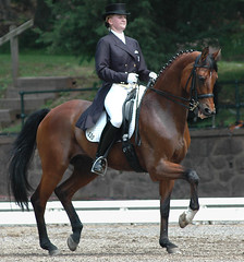 2006 Brentina Cup (Rock and Racehorses) Tags: horses nj quiron gladstone dressage usef horsesatwork horsesatworkpod