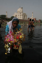 Faith in Yamuna as Mother, Behind Taj (Captain Suresh Sharma) Tags: travel flowers summer woman india holiday heritage love water architecture lady river religious asia muslim traditional religion culture taj agra holy memory dome offering oldlady ritual tradition hindu saree minarets offerings immerse yamuna top20india minars behindtaj rearoftaj
