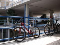 Bicicletas na FCUL!