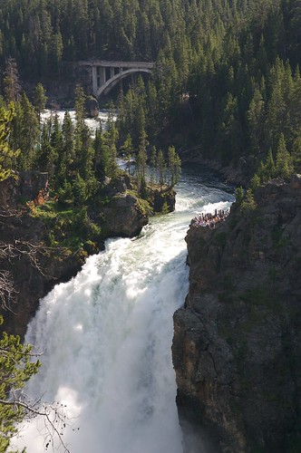 Falls at Yellowstone's Grand Canyon