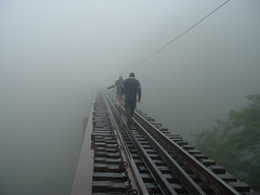Obnubilated (Diego F. G.) Tags: bridge paran fog train do rail ponte explore serra neblina trem cadeado trilho finepixa205