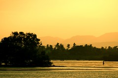 transitions [1 of 3]- 30min before sunset (Farl) Tags: travel sunset sea beach colors silhouette island gold mangrove cebu transition lapulapu opon phototip cebusugbo subabasbas