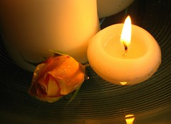 "Candlelight and Roses is how I'd love to be ""wooed"" (Spiralz) Tags: shadow flower reflection love water glass leaves rose candle peach bowl romance candlelight waterdroplets wooing spiralzart spiralzdreamdate wooed"