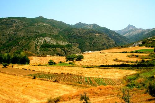 Paisaje de Sierra Nevada en verano / Sierra Nevada's landscape in summer by Silvia de Luque