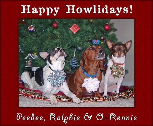 2005-12-25 - Happy Howlidays