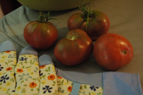 My Homegrown Tomatoes!