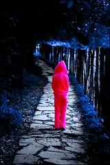 Nightmare... (Christine Lebrasseur) Tags: street wood pink blue people france tree art girl forest canon fence spain madera rboles poetry child little body quote path bosque cerca poesia pequea onblack 3way muchacha zugarramurdi lane kidslife interestingness104 frenchslam challengeyouwinner potwkkc2 allrightsreservedchristinelebrasseur