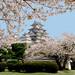 姫路城:Himeji Castle Photoshopped