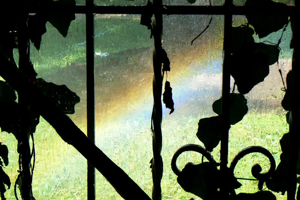 Sprinkler system repaired