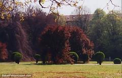A nice garden, close to the church where they keep the Turin shroud