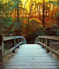 Over the bridge (jilllian2) Tags: bridge autumn fall fallcolors buttermilkfalls