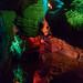 Laurel Caverns 22