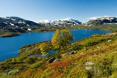 IMG_0997 Kjelavatn ved Vgsli (JarleB) Tags: telemark fjell hst rldal haukeli haukelifjell hyfjellet vgsli