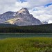 A Look Across a Grassy Meadow to Mount Chephren and the White Pyramid (Icefields Parkway)