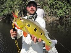 Amazonia 2012 (56)