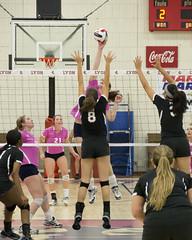 DJT_3694 (David J. Thomas) Tags: sports athletics women lions volleyball arkansas scots batesville lyoncollege freedhardemanuniversity