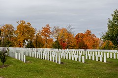 DSC_5211 (PaulPagPhotos) Tags: war cemetaries soldiers veterans