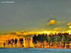 Sunrise or burning forest (GerWi) Tags: morning november skyline sunrise landscape fire early meer wasser sonnenuntergang outdoor hell feld himmel wolke burning dmmerung brand feuer landschaft wald sonnenaufgang forestfires morgenstunde lschen woold heiter morninghour