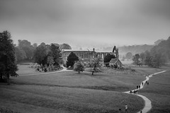 Week # 44 (Jon) Tags: mist monochrome abbey mono nikon october north east bolton northeast northyorkshire boltonabbey 2015 d7100 nikond7100