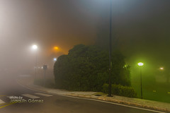 Lights in the Fog (II) (Oddiseis) Tags: street city autumn light urban tree valencia colors weather fog night garden airport spain nightscape nocturnal streetlamp citylights mysterious civilization meteorology moist manises valenciancommunity