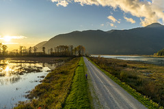 _DSC0709-HDR (Xfour00) Tags: sunset lake canada mountains reflection vancouver landscape bc outdoor britishcolumbia sony hill peak shore handheld marsh alouette dyke mapleridge pittlake goldenears wildlifepreserve pittmeadows mountainridge managementarea pittaddington sel28f20 sonyfe28mmf2 a7r2