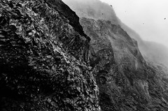 The cliffs of Reynisfjall (trochford) Tags: blackandwhite bw cliff mist mountain monochrome birds rock fog canon dark mono blackwhite iceland exterior outdoor dramatic vik craggy mysterious rough rugged vk reynisfjall geoiceland