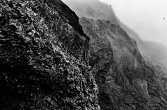 The cliffs of Reynisfjall (trochford) Tags: blackandwhite bw cliff mist mountain monochrome birds rock fog canon dark mono blackwhite iceland exterior outdoor dramatic vik craggy mysterious rough rugged vk reynisfjall geoiceland