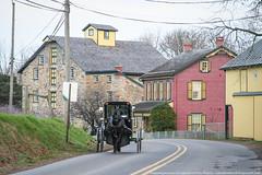 samsebeskazal.livejournal.com-0421.jpg (samsebeskazal) Tags: pennsylvania farm amish lancaster lancastercounty buggy pennsylvaniadutch