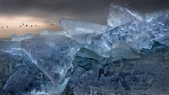 Kruiend ijs Urk