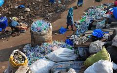 DSA_6746 (Dirk Rosseel) Tags: dharavi recycling business mumbai india maharashtra ngc pet bottles plastic slum slums