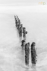 Groynes and Ghosts (M Hillier) Tags: groyne sea wood wooden blur blurred blurry longexposure northsea north yorkshire ocean coast blackandwhite mono monochrome monochromatic northyorkmoors nationalpark dawn sunrise diagonal winter