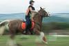 Cheval (Samuel Raison) Tags: cheval horse nikon nikond3 nikon2870200mmafsvr slowshutterspeed nikonpassion