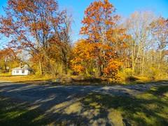 IMG_9122 (rpealit) Tags: scenery wildlife nature east hatchery hackettstown